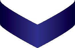 Dark blue arrow